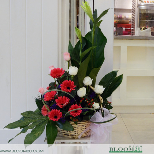 gerberas lilies