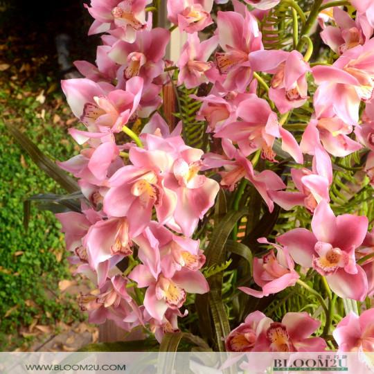 Artifical Cymbidium Orchids