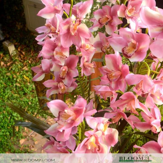 Aritificial Flowers Arrangement