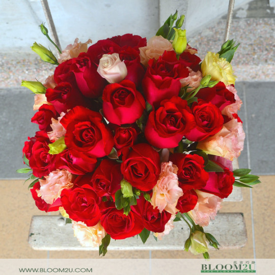 red roses round