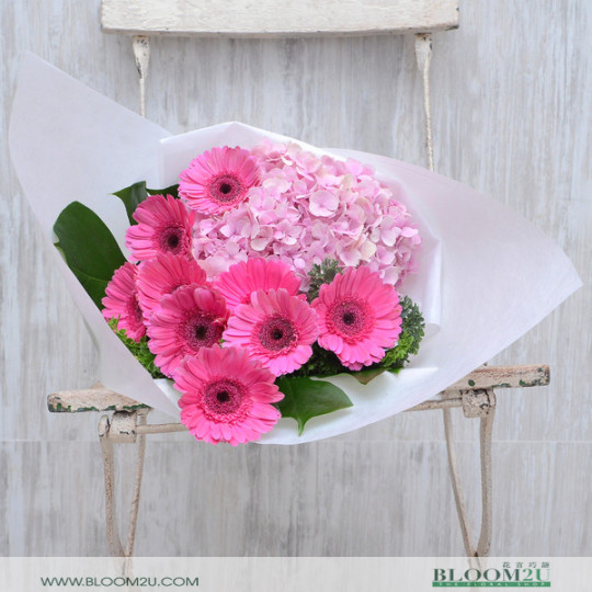 Hydrange and Daisy Hand Bouquet