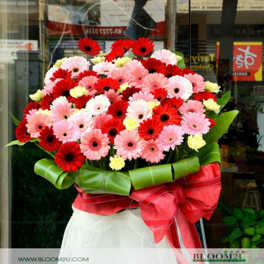 Delivery Congratulations Flower
