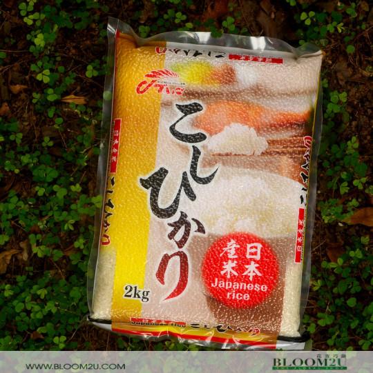 Fukushima Koshihikari Rice