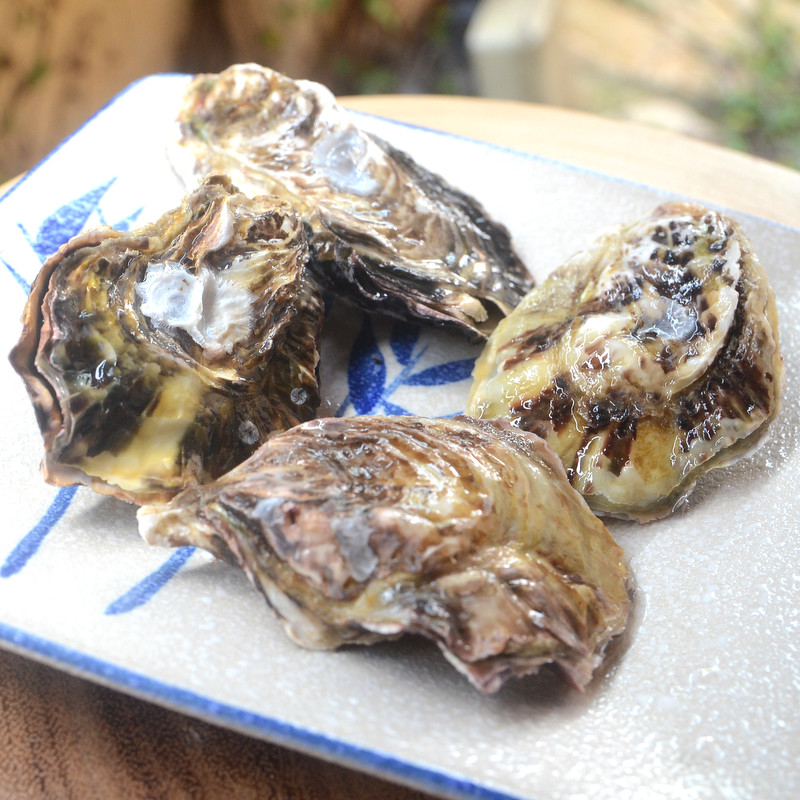 Oyster from Japan